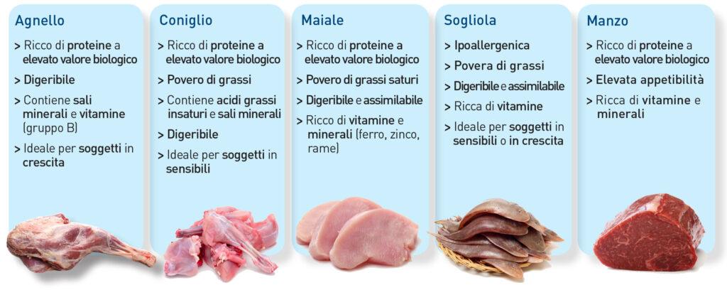 Le proteine animali, benefici e attenzioni