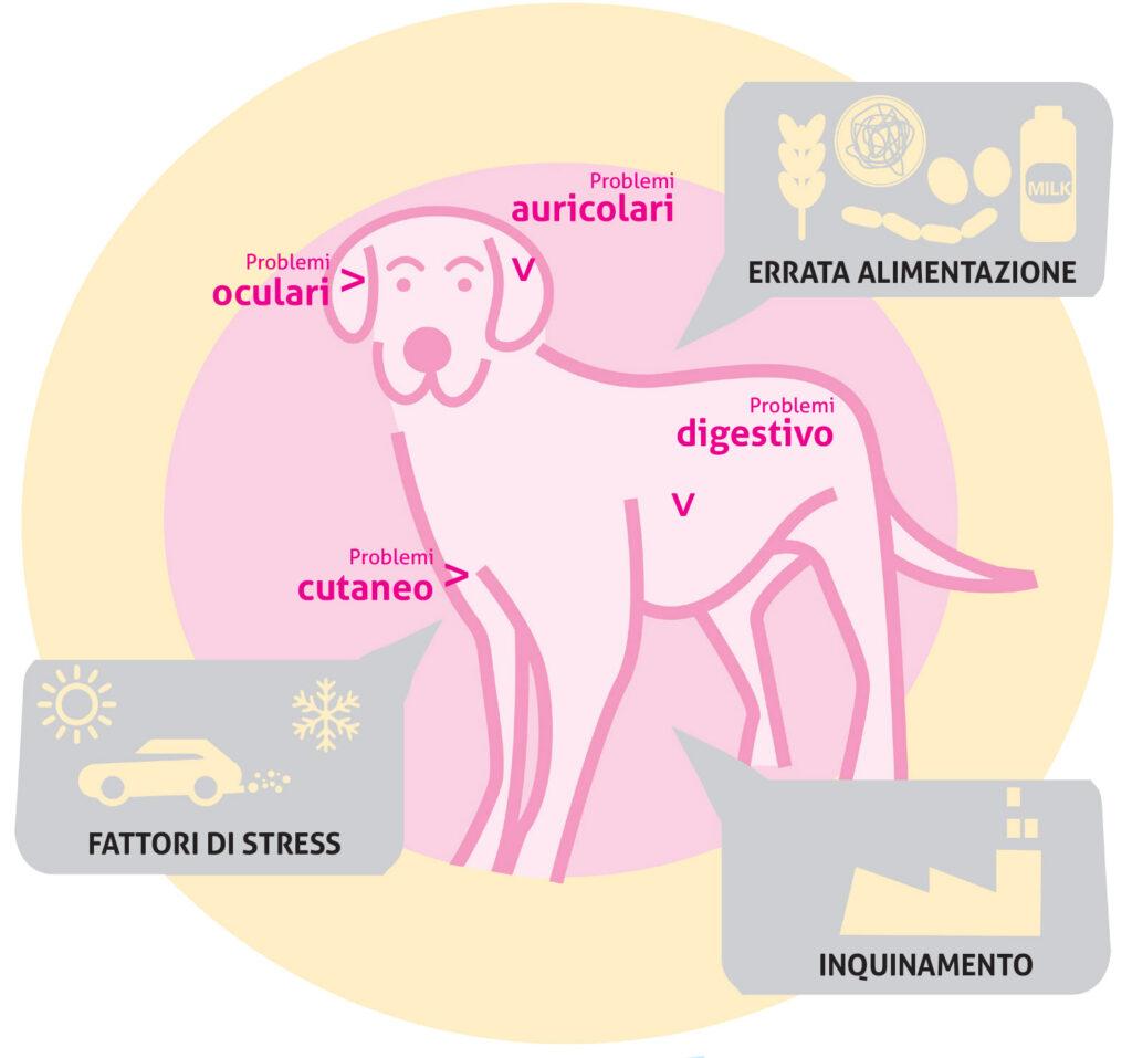Le minacce al benessere del tuo cane