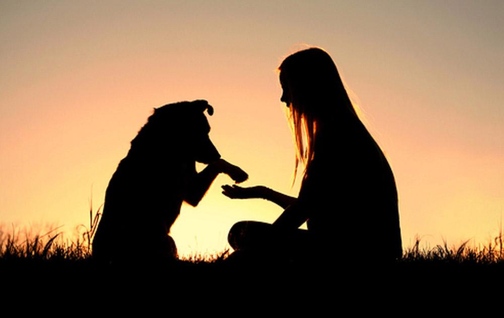 Uomo e pet, un virtuoso condizionamento reciproco